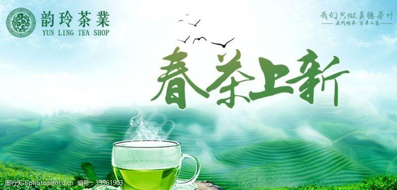 春茶上新春茶图片
