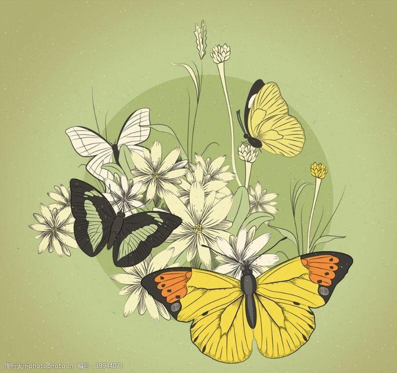 彩绘花卉复古蝴蝶和花卉图片