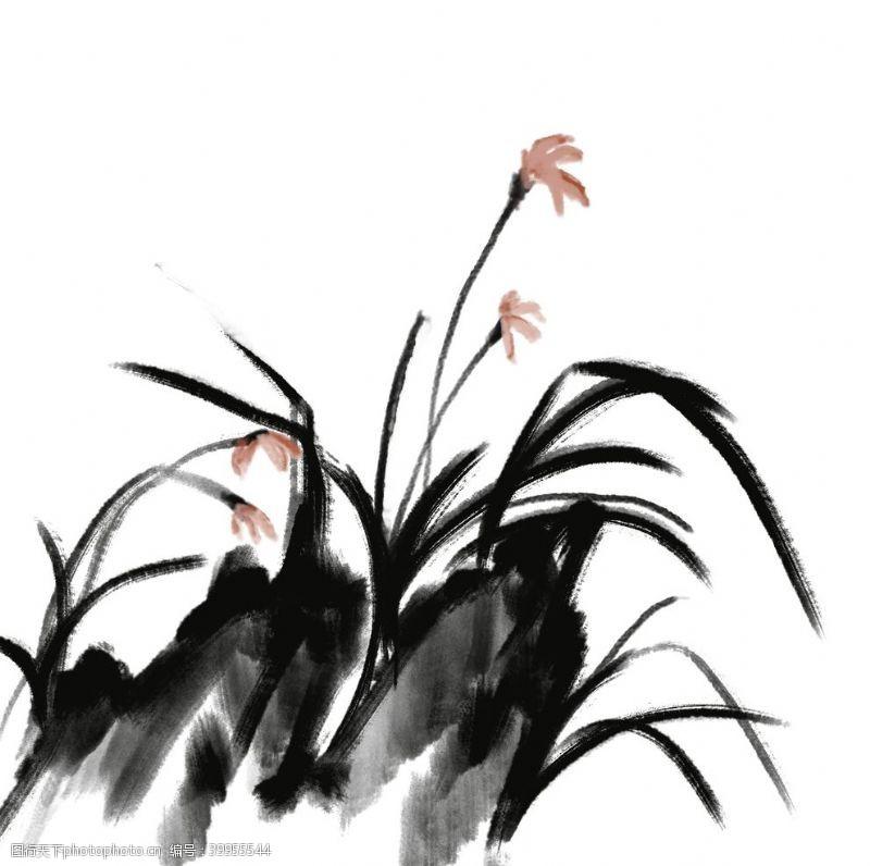 插画植物国画兰花图片