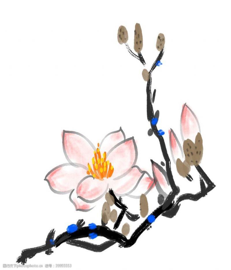 插画植物兰花国画素材图片