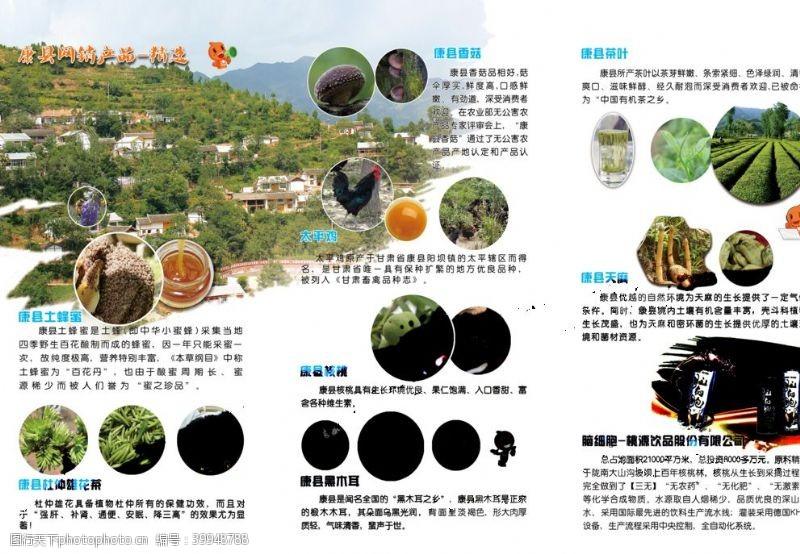 折页宣传册折页图片