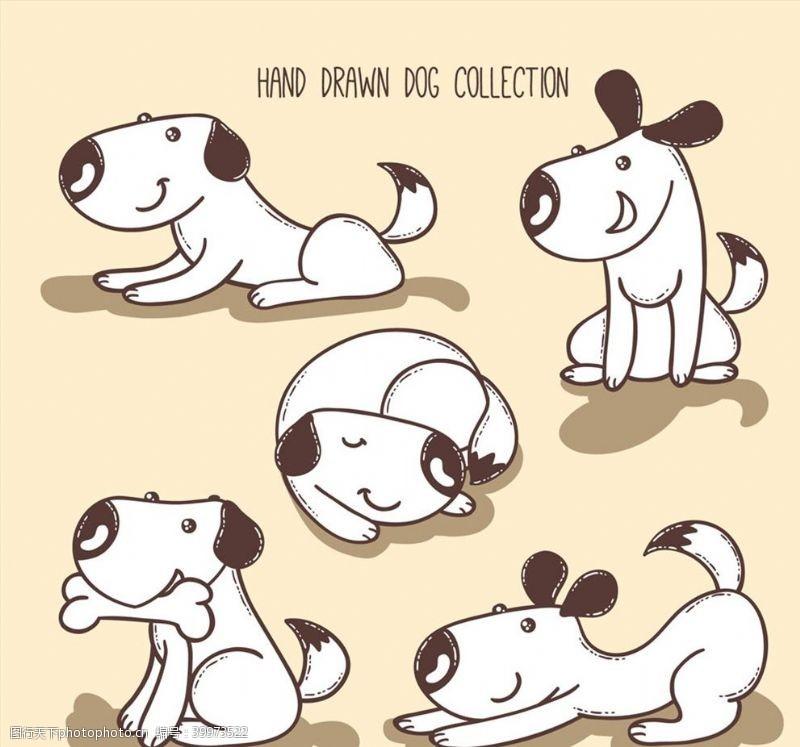 白色宠物狗图片