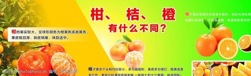 餐饮美食橙图片