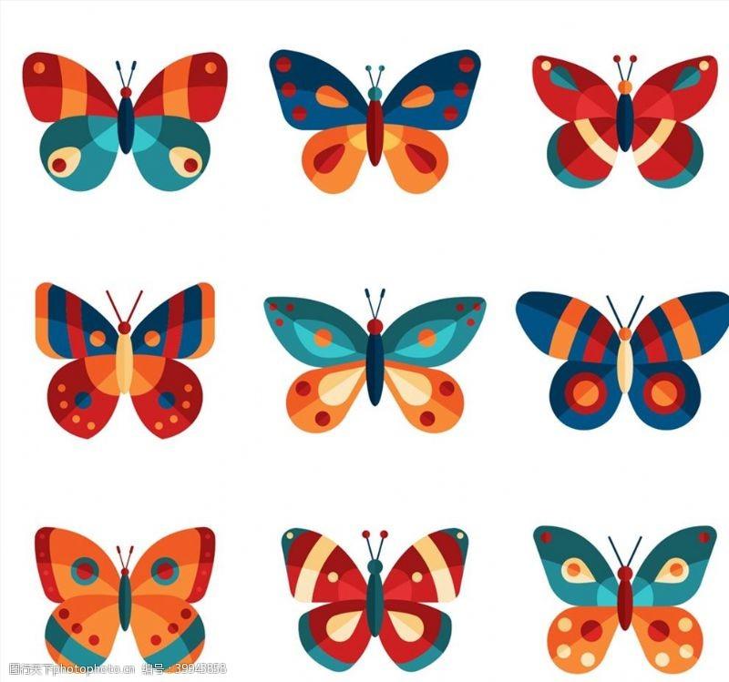 psd素材拼色蝴蝶设计图片
