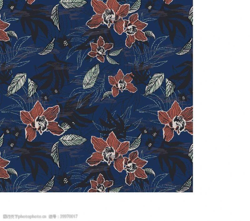 冲浪素材热带雨林植物椰树花朵图片