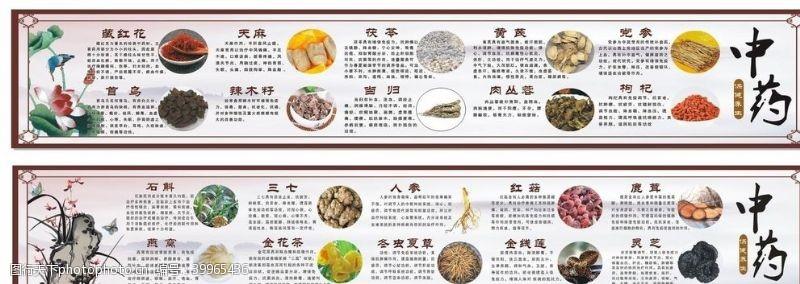 餐饮美食药材简介图片