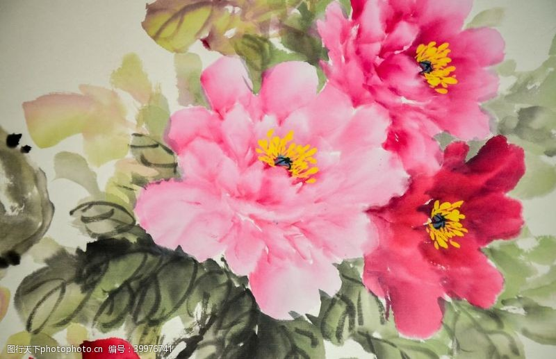 牡丹花水墨画国画图片