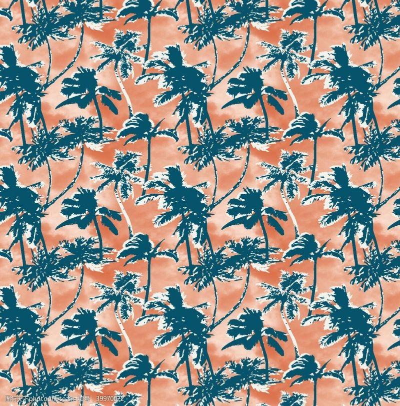 冲浪素材热带雨林植物椰树图片