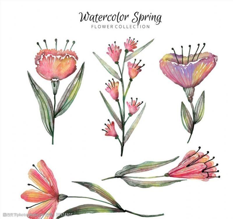 水彩绘春季花卉图片
