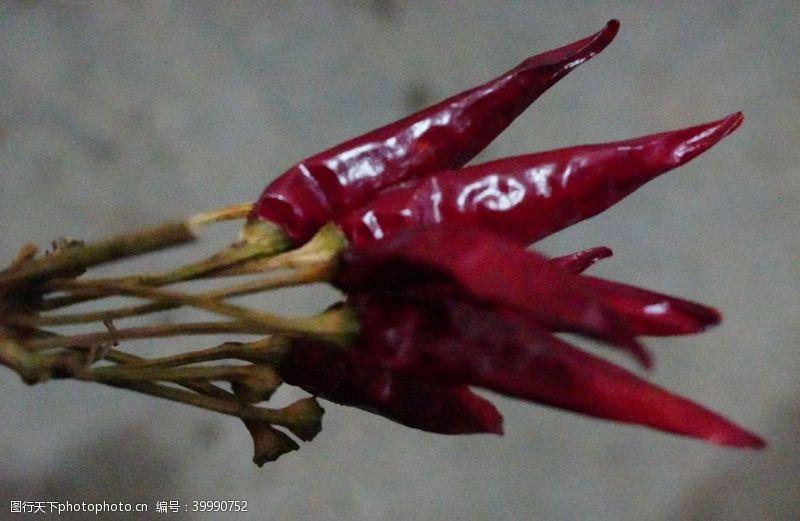 芹菜辣椒图片