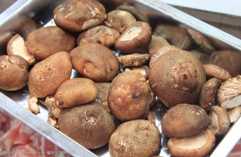 食用菌食用蘑菇图片