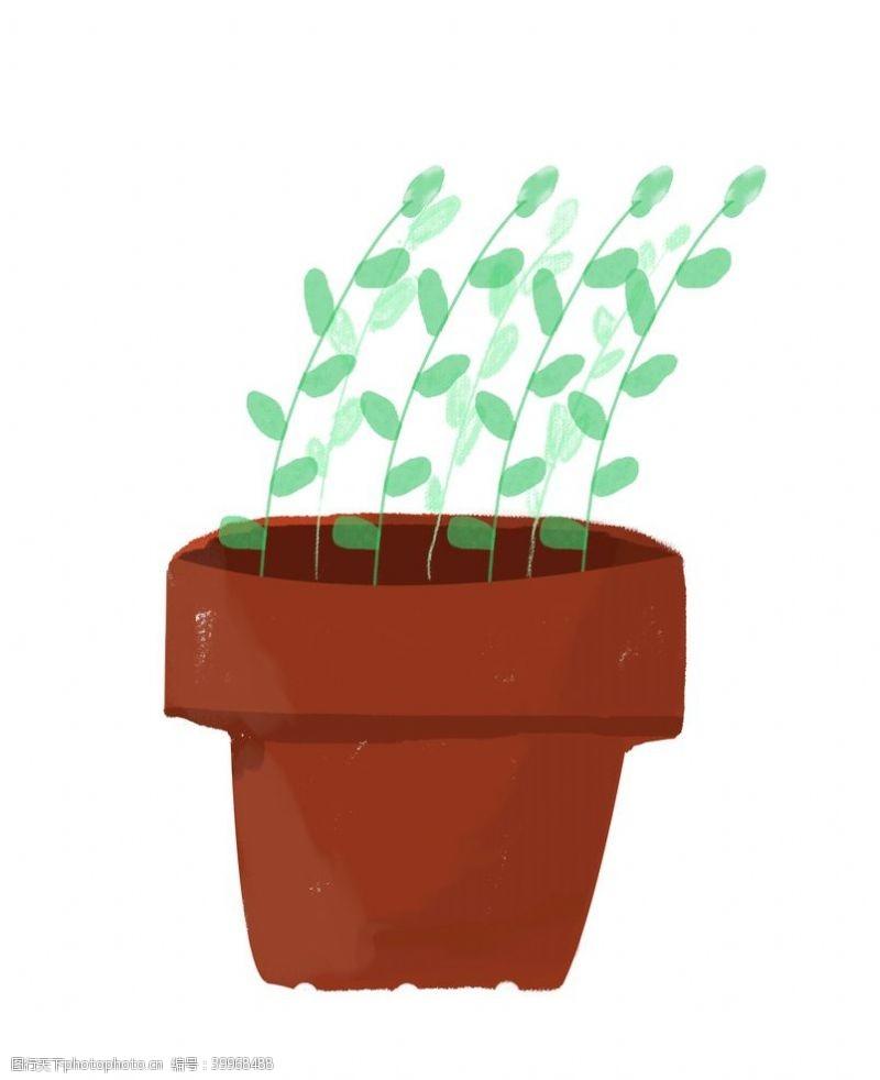 插画植物手绘水彩植物图片