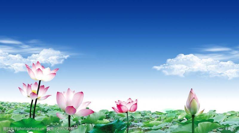 新中式水墨图片