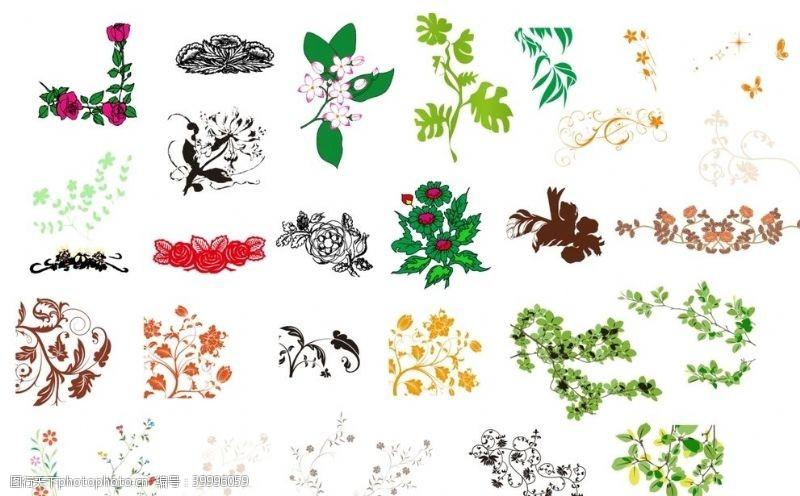 矢量花朵花卉素材图片