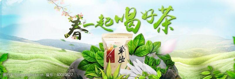 春茶图片素材