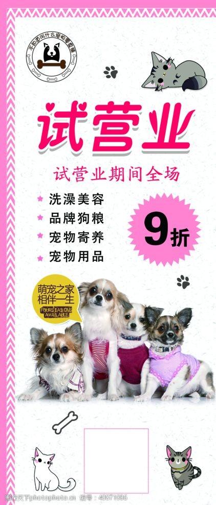 宠物小狗宠物展架图片