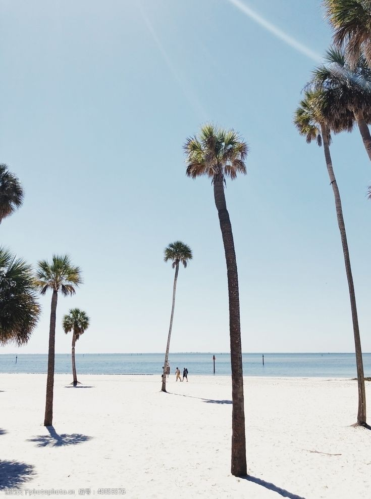 冲浪大海沙滩风景图片