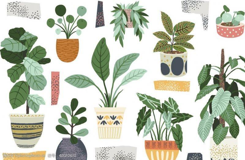 居家植物盆栽矢量插图图片