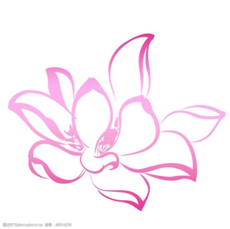 手绘画手绘粉色荷花线条图片