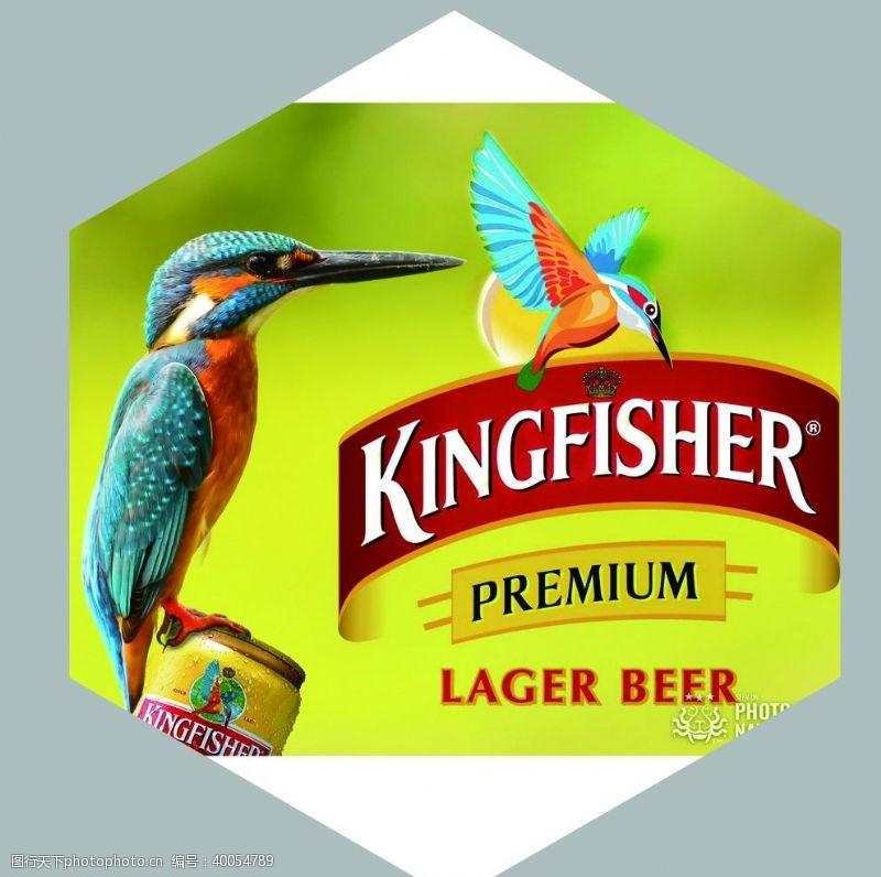 酒标印度翠鸟啤酒图片
