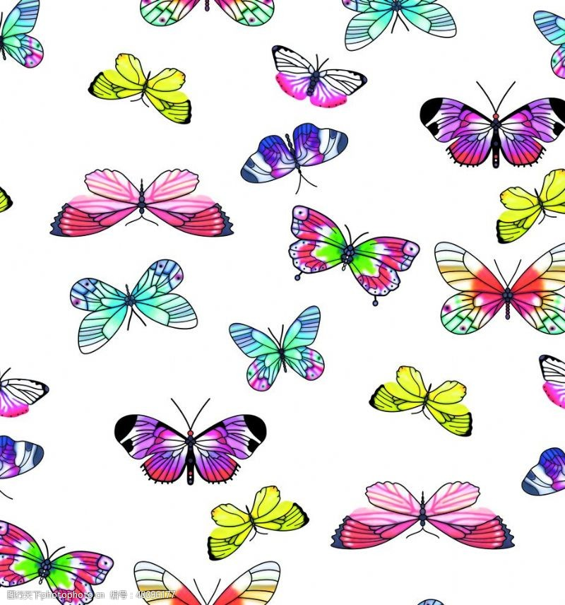 走秀蝴蝶数码印花手绘花图片