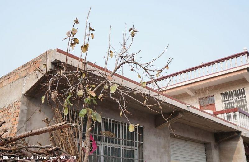 传统建筑老屋图片