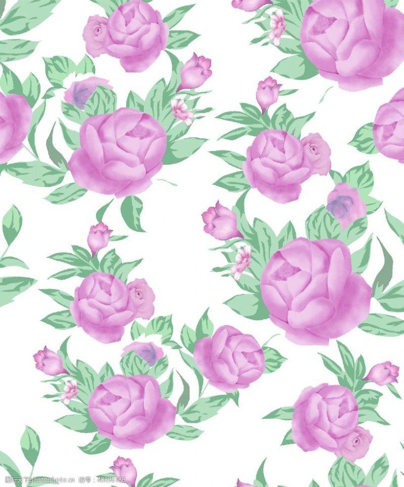 沙滩裤玫瑰花手绘花数码印花图片