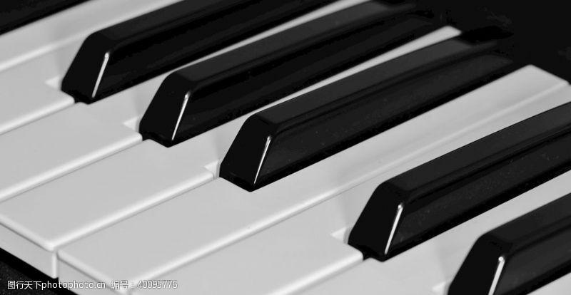 音乐乐器钢琴键图片
