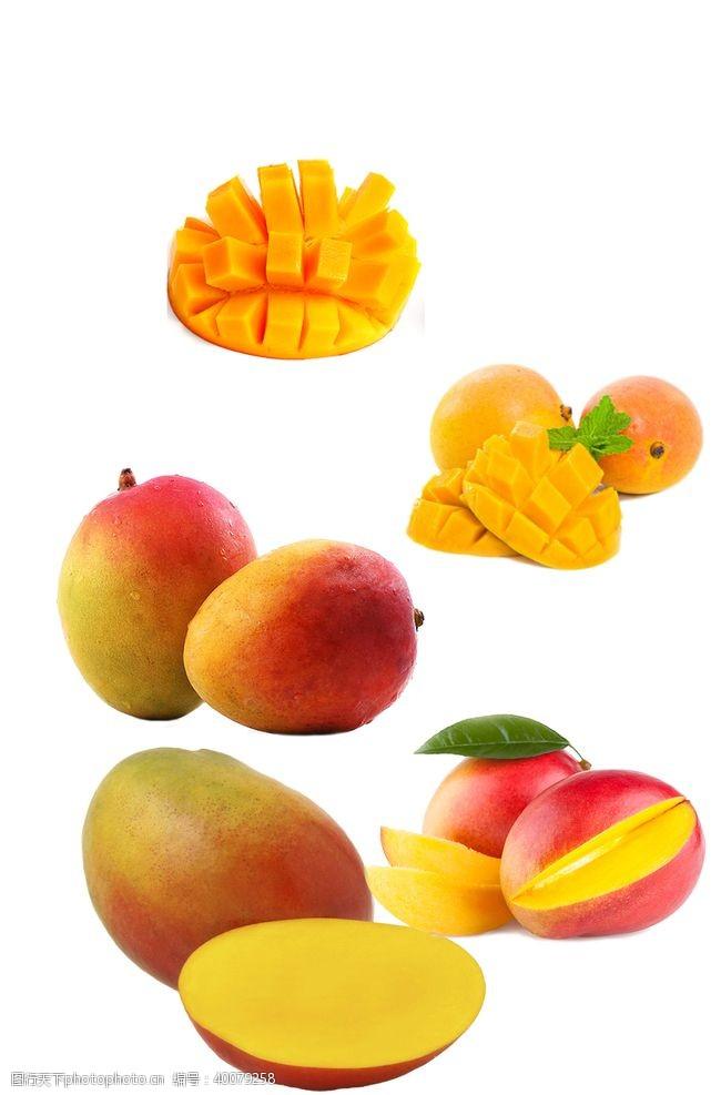宣传册设计芒果图片