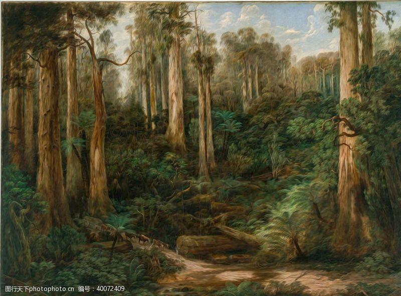 油画艺术森林图片
