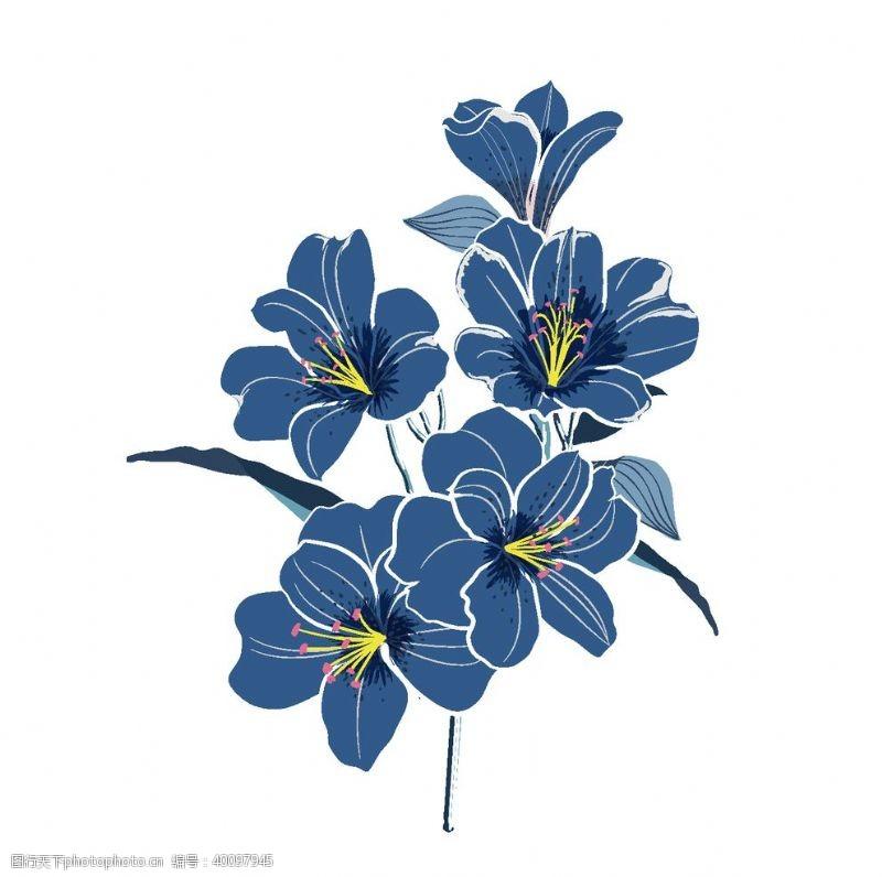 卡通花朵手绘蓝色花朵植物图片