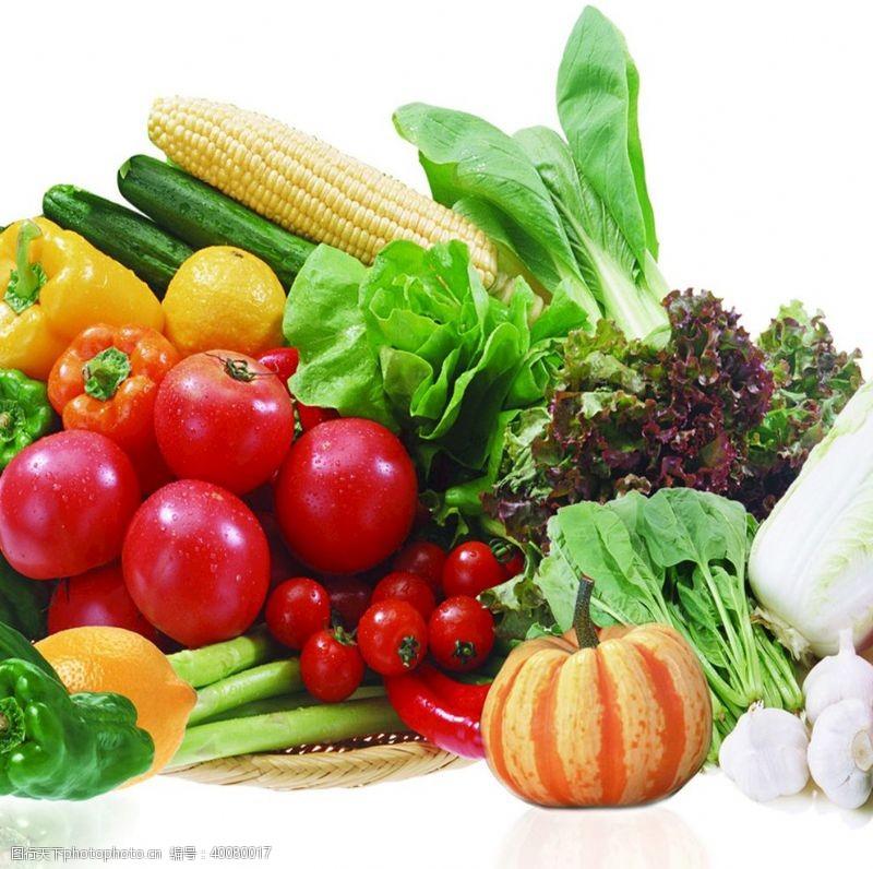 油菜蔬菜图片