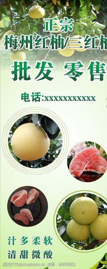 绿色展架柚子批发图片
