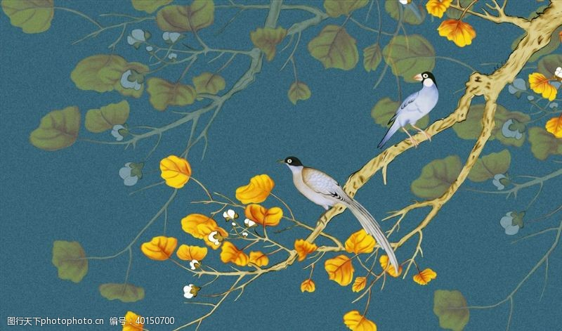 花鸟画手绘画鸟背景墙图片