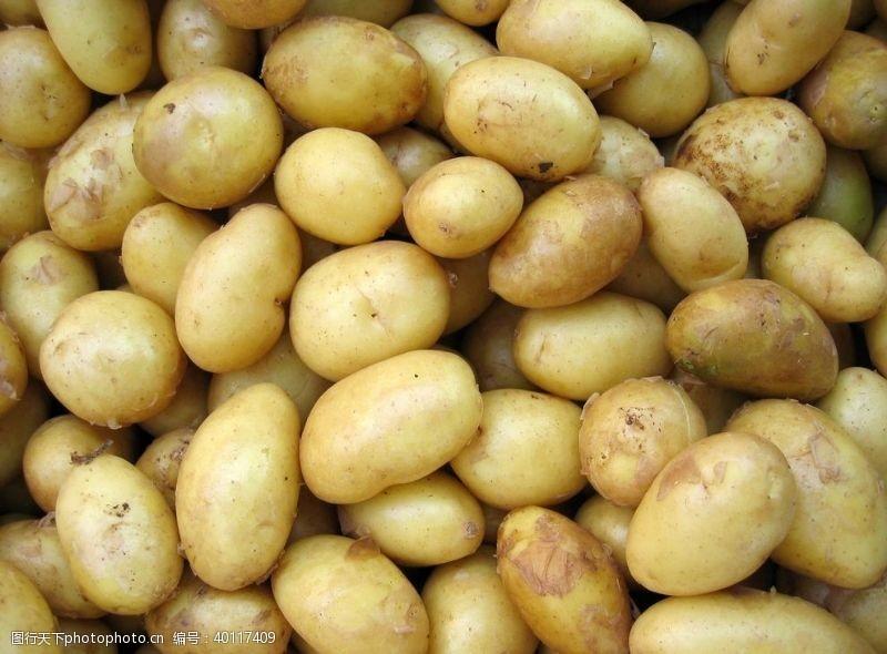 菜篮子土豆图片