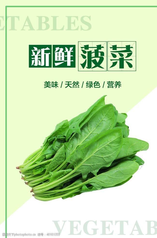 菠菜海报图片