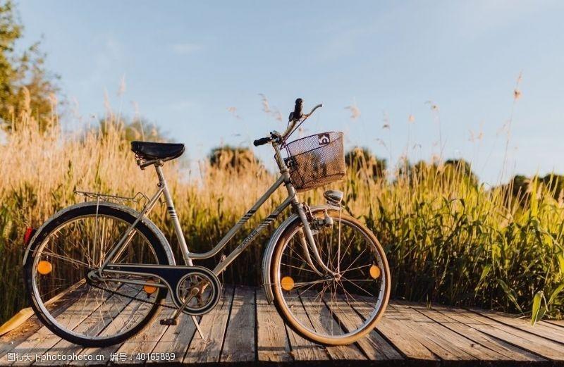 绿地单车图片
