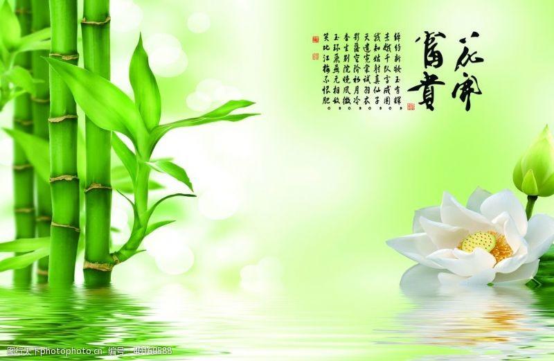 仙境花开富贵荷花竹子图图片