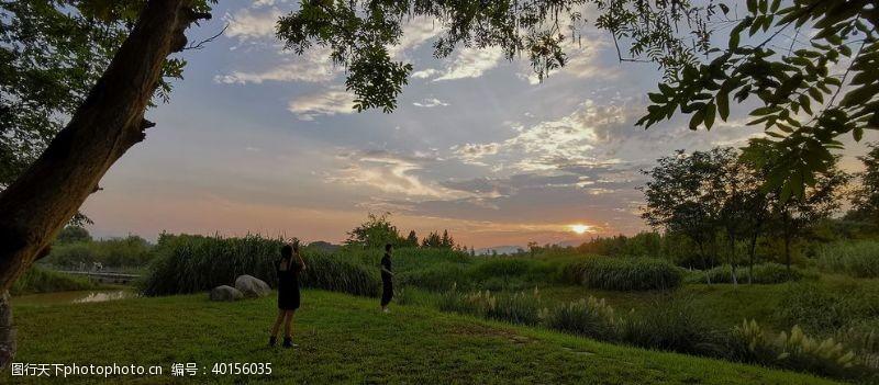 湿地公园湿地落日图片