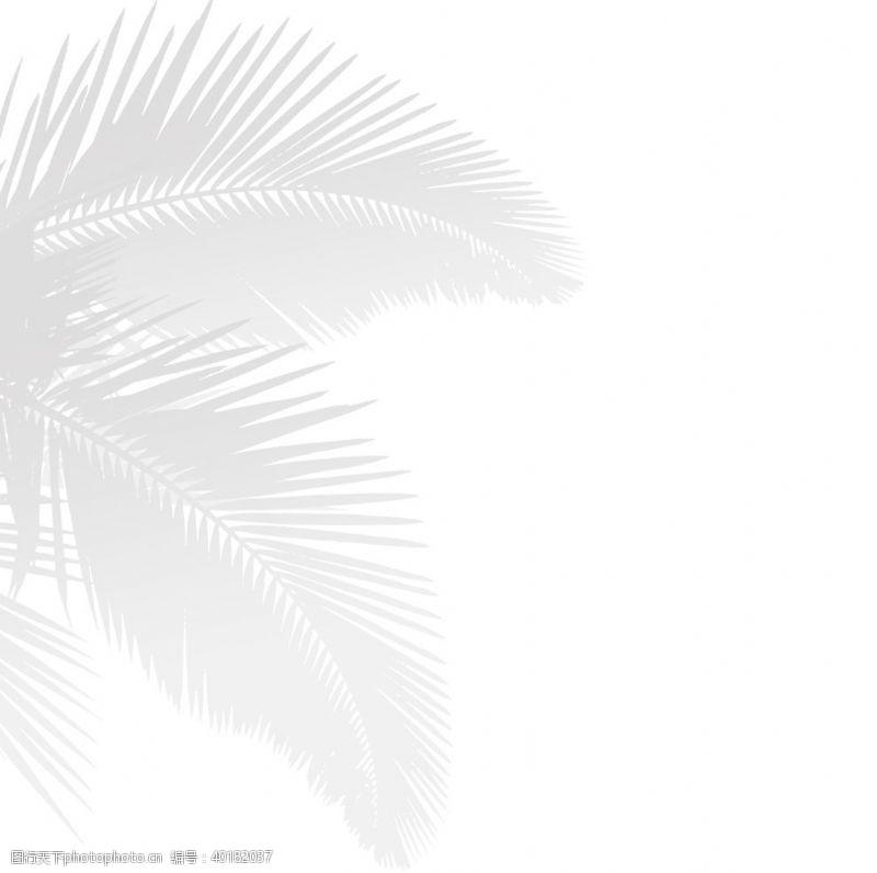 阴影芭蕉叶装饰元素图片