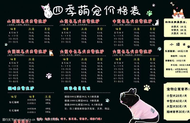 洗护宠物价格表图片