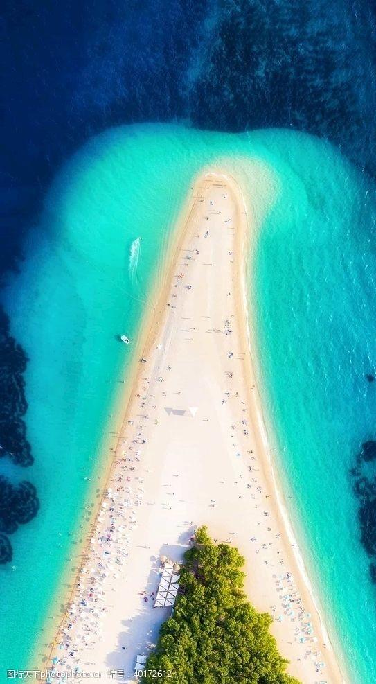 棕榈树大海图片