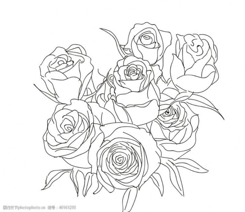 花束玫瑰花图片