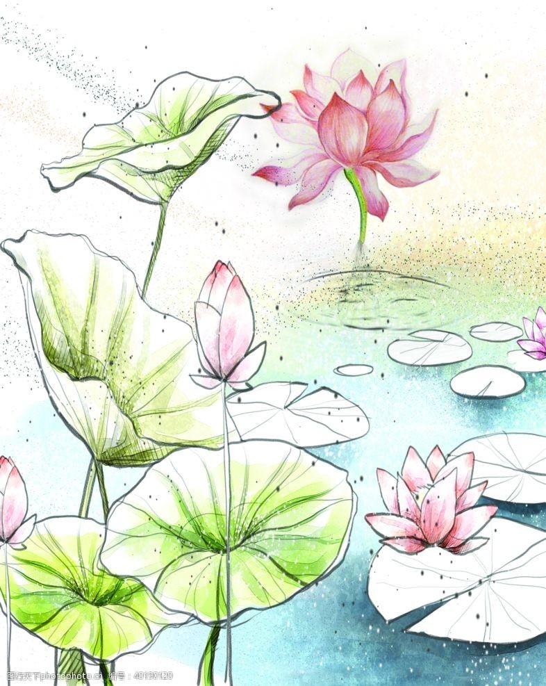 矢量花朵荷塘花叶铅笔彩画荷花素材图片