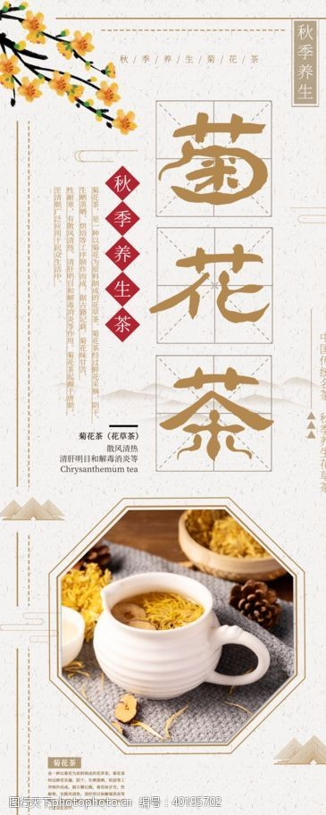 排毒菊花茶图片