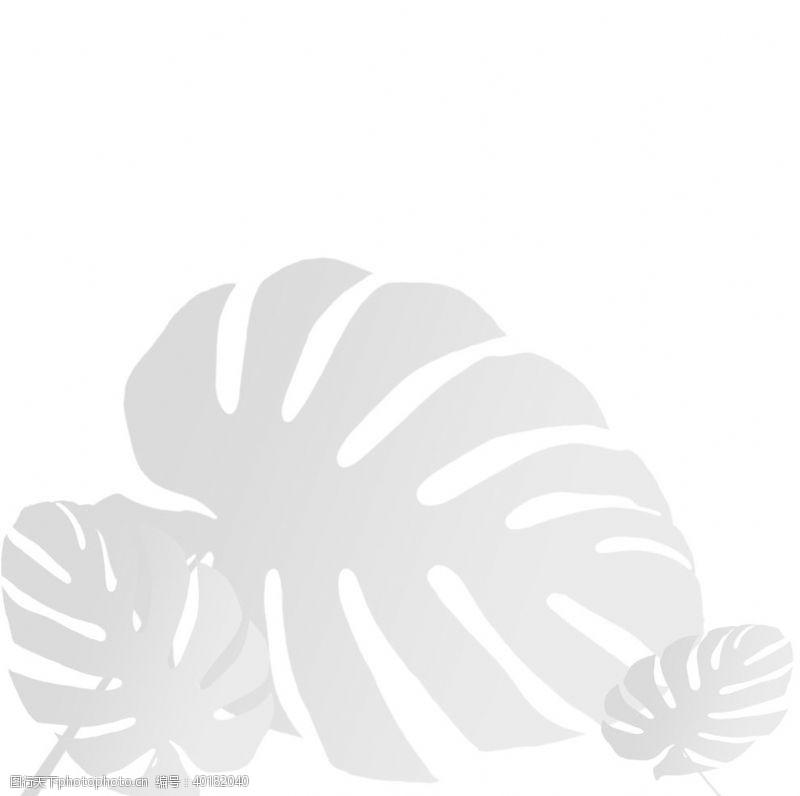 阴影植物影子元素图片