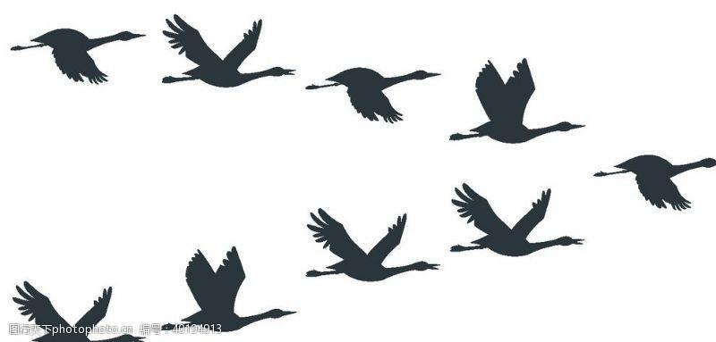 白鹤中国风仙鹤剪影元素图组图片