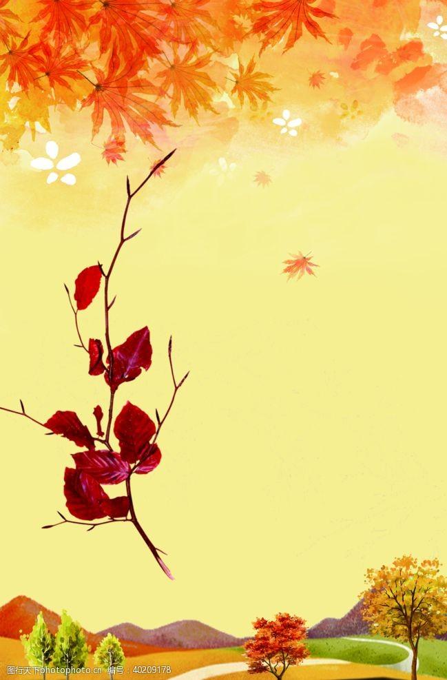 植物边框枫叶素材图片