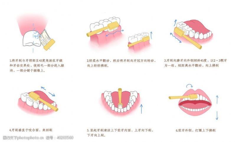 美白刷牙步骤图片