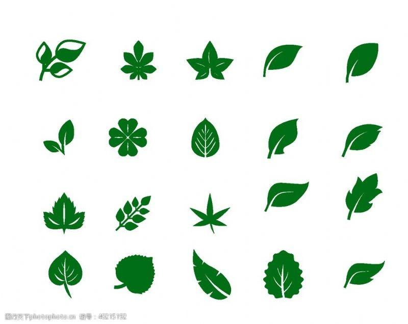 植物边框叶子图片